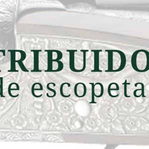 Bannerarrieta